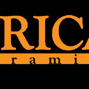 Redecoreaza cu EricaCeramica